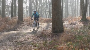 Mountain biking surrey hills