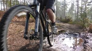 Mountain biking surrey hills