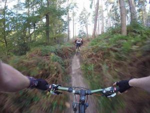 south downs mountain biking friston forest mtb guided rides