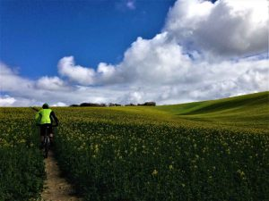 south downs mountain biking guided rides singletrack