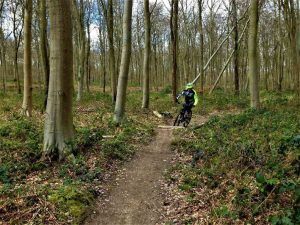 South downs mountain biking guided rides singletrack houghton forest whiteways mtb