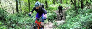 Mountain biking Surrey hills guided rides mtb coaching
