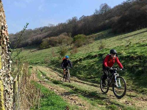 Goodwood and Kingley vale ride