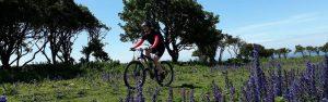 Guided mountain biking surrey hills south downs wales peak district lake distirct scotland mtb skills coaching