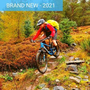 Tweed Valley Enduro MTB Tweed Love Guided MTB Trip Marmalade MTB Golfie Glentress