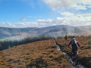Tweed Valley Enduro MTB Tweed Love Guided MTB Trip Marmalade MTB